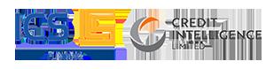 ICS Funding Logo